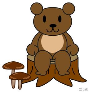 Bear_mushroom_2